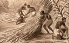 Anonyme [M.], Scène de cueillette de la canne à sucre, vers 1830-1840. Détail. Collection musée d'Aquitaine, photo L. Gauthier, mairie de Bordeaux